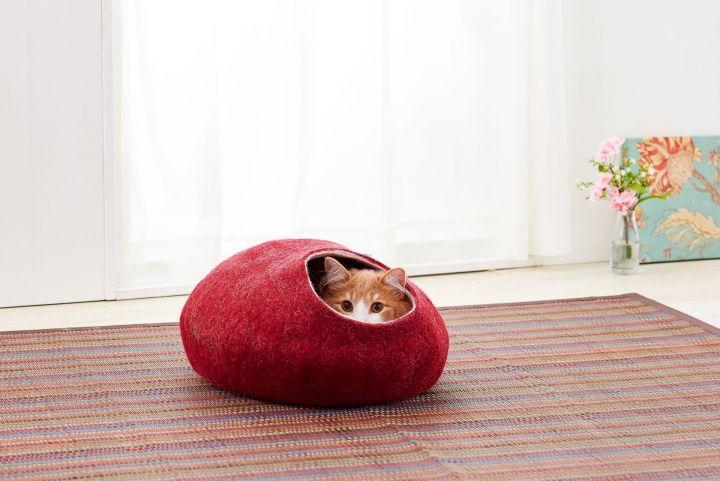 猫ちゃんとの暮らし、もっと楽しく!注目の猫アイテム13・前編