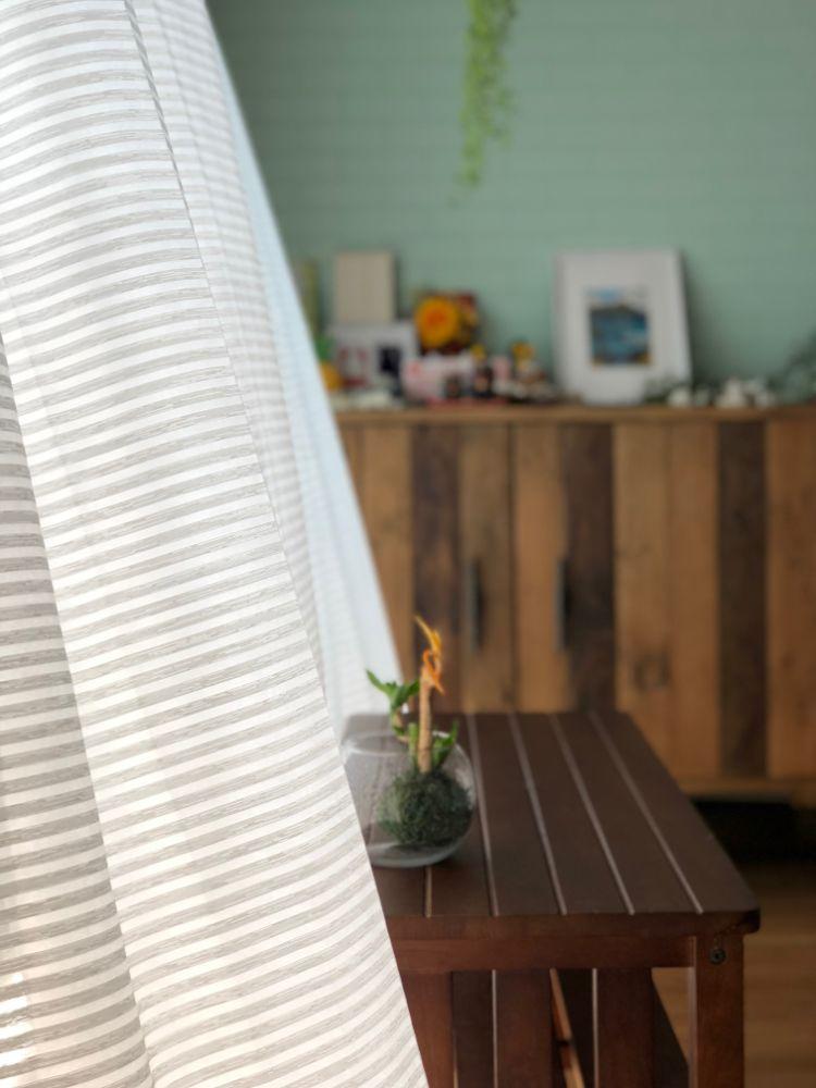 vol.21【リノベ|インタビュー】風と光と緑を感じる、ロコスタイルの家