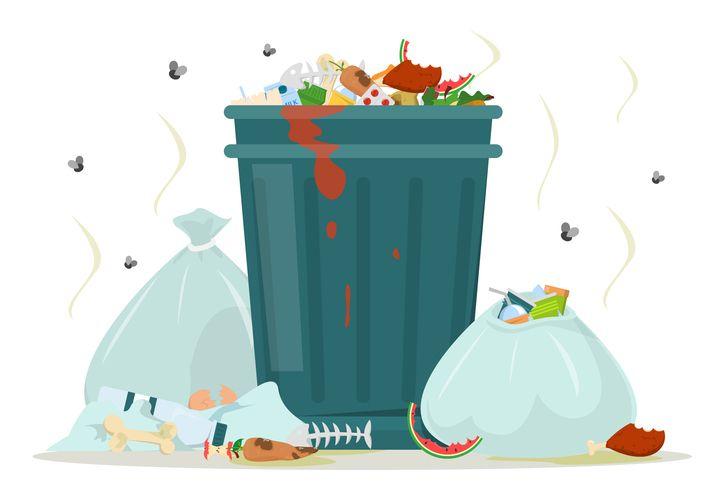 ゴミ箱に寄って来る不快な虫。すぐできる対策方法は?