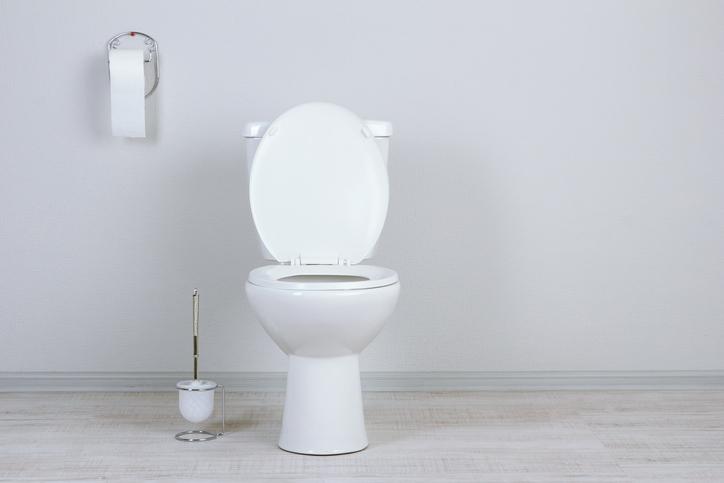 意外と簡単!!簡単DIYでできるタンクレス風トイレ!!