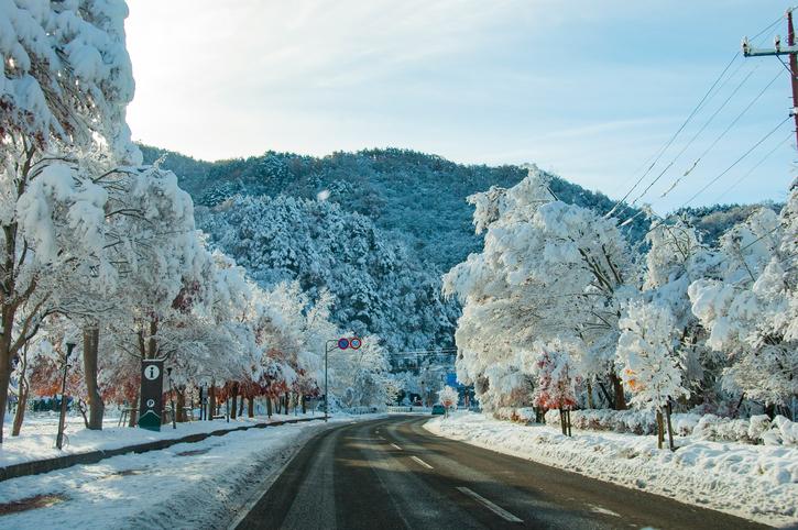 この冬行きたい中国地方の絶景デートスポット!