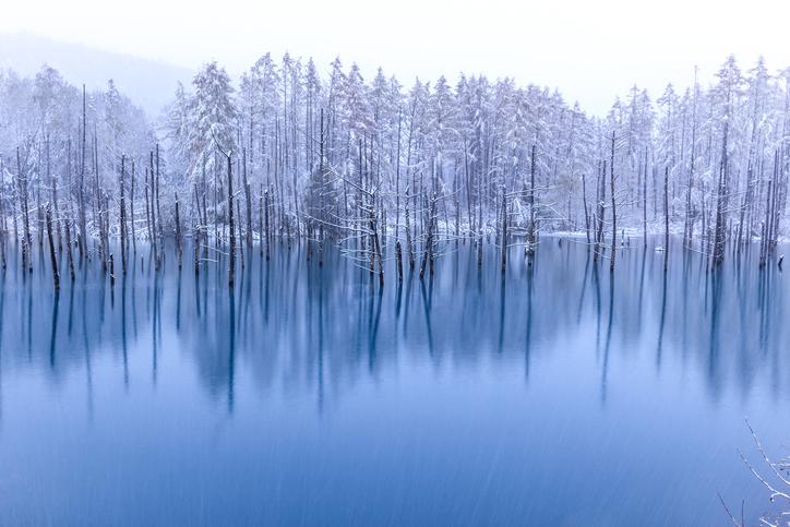 冬の北海道、オススメデートスポットをご紹介!