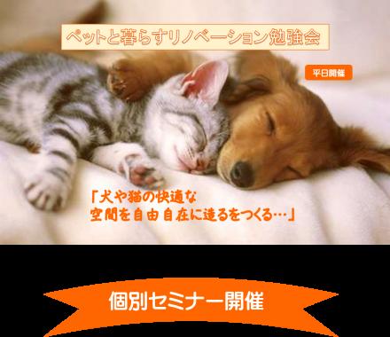 ペットと暮らす家づくり‼ 犬の本能を知らないと 大変なことに!