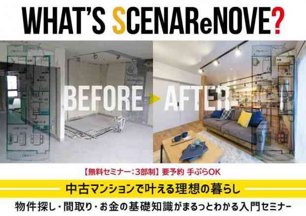 WHAT'S SCENAReNOVE?